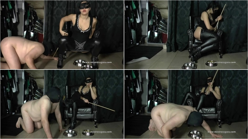 tn-MistressGaia_-_Training_A_Slave_To_Lick_My_Shit_From_My_Dirty_Shoes.ScrinShot