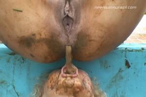 MFX-1231-1 Scat Summer Pool