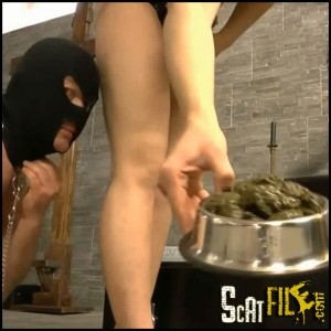 SCAT DOG BOWL SLUT FULL HD 1080 (NEW RELEASE 29.04.2016) MISTRESS HUMAN TOILET