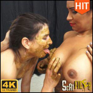 BE OUR BATHROOM Ultra HD 4K NewMFX (MF-6485-1, newscatinbrazil, mfx video) 19/11/2016