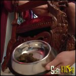 LUNCH THEN PUNISHMENT – MISTRESS GAIA – femdom scat, shitting, toilet slavery, Full HD 1080 (23/02/2017)
