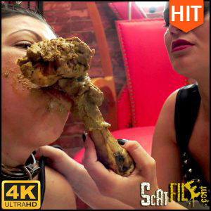 FOOD FOR MY DOG – 4K Ultra HD – NewMFX Scat (MF-6627-1-1, Diana, Nicole, Newscatinbrazil) 14/03/2017
