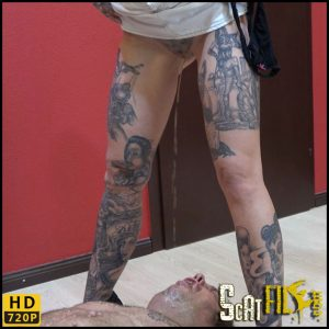 Full Pack for the Pimple Slave – scat-movie-world – HD 720p (scatting domination, femdom scat) 09/10/2017