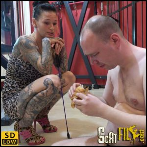 The selecting shit-eater – scat-movie-world – HD 720p (toilet slavery, scat humiliation, femdom) 23/03/2018