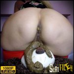 Teddy Bear – My Toilet – scatdesire – Pee, Poop Videos, Smearing, Toilet Slavery